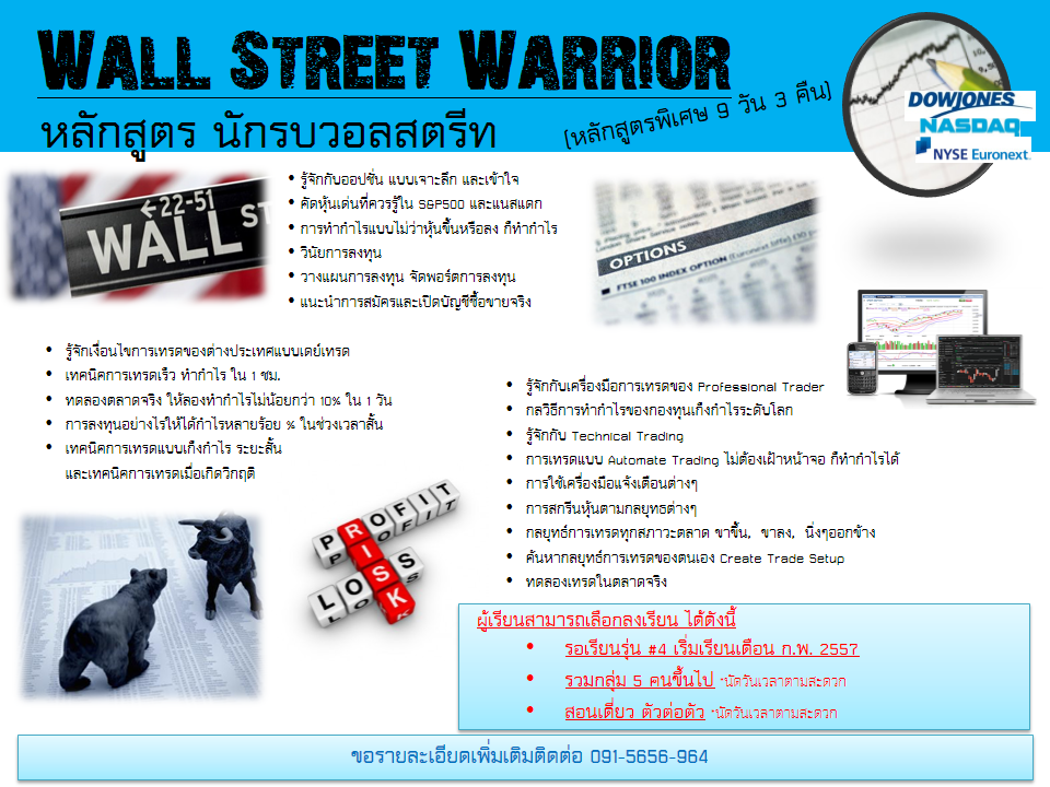 options-trader-wallstreet-warrior-Q4-2013